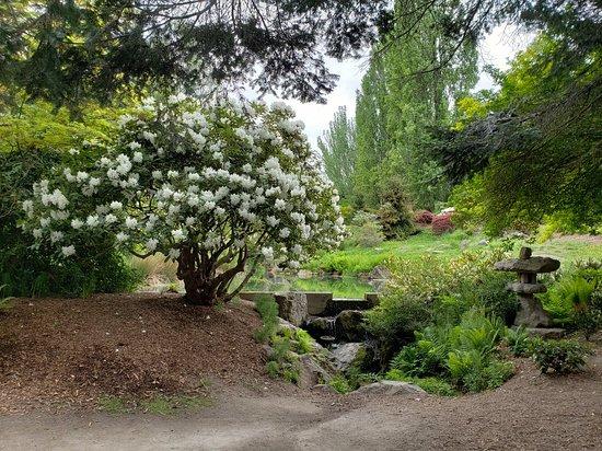 Kubota Garden: 20180509_125748_large