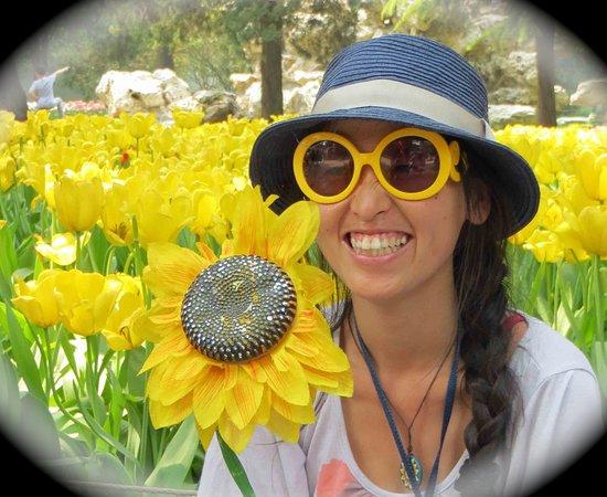 Tianjín, China: Sunflower Tours China