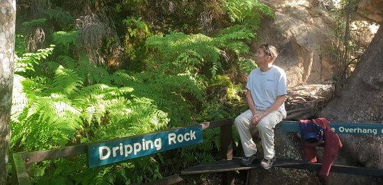 Cania Gorge National Park, ออสเตรเลีย: 20180513_084648_large.jpg