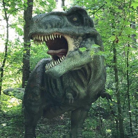 DinoPark Vyskov: photo6.jpg
