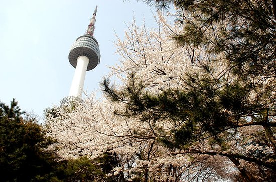Prenotazione di N Seoul Tower Combos