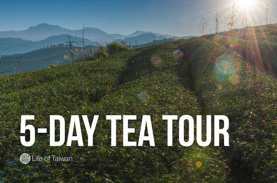 Taiwan Tea Tour (5-Day Private Tour)