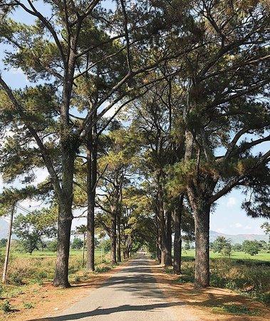 Провинция Зялай, Вьетнам: Gia Lai