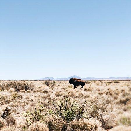 Sierra Grande Lodge & Spa: photo3.jpg