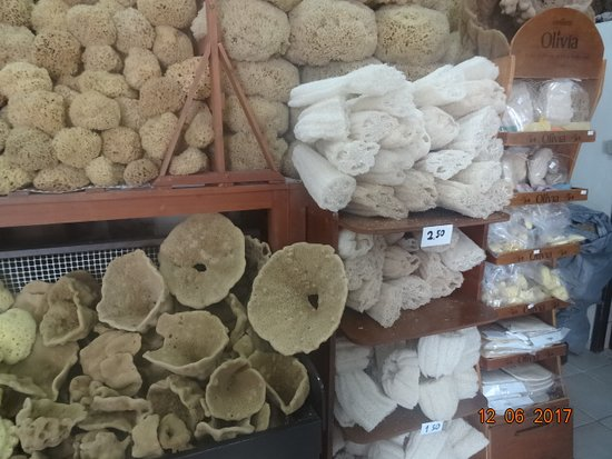 Factory of Natural Sponges