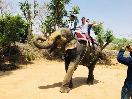 Casa Del Elefante