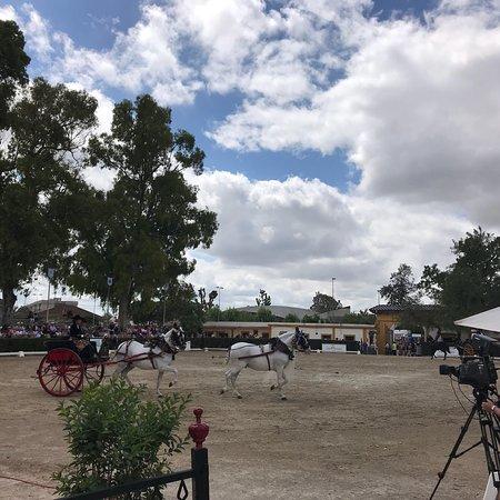 Feria del Caballo Φωτογραφία