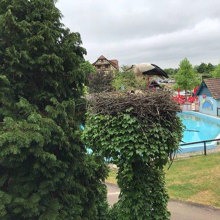 Kintzheim, ฝรั่งเศส: photo9.jpg