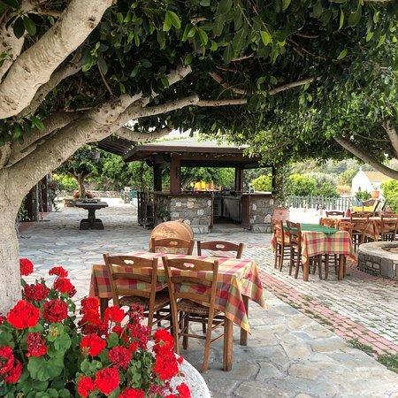 Pelecanos Taverna