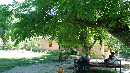 Jizzakh Foto
