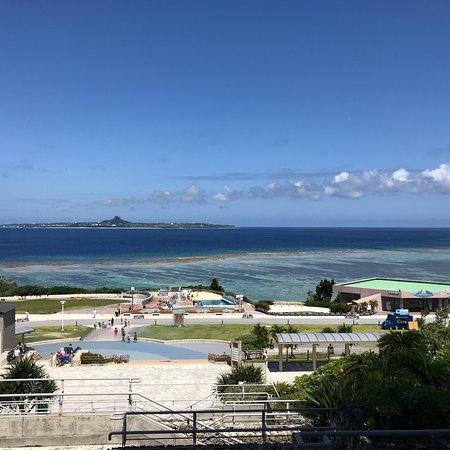 Okinawa Churaumi Aquarium: photo2.jpg