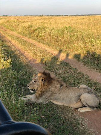 Phinda Private Game Reserve, Sudafrica: photo5.jpg