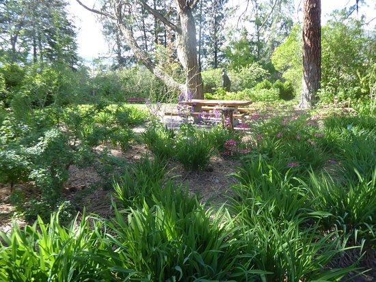 Summerland, Canada: flower beds.