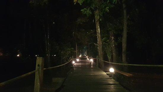 Foto de Kota Kinabatangan