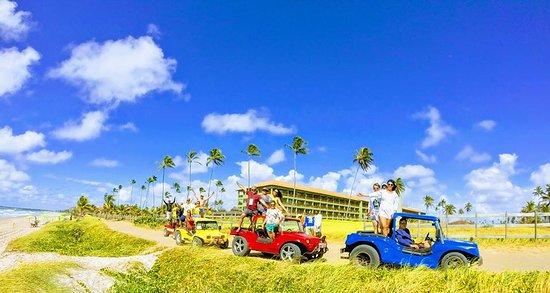 Ailtour Viagens e Turismo