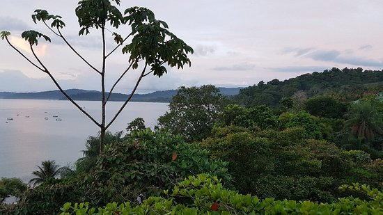 Osa Peninsula, Costa Rica: 20180505_174449_large.jpg