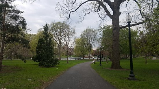 Boston Public Garden: 20180503_170917_large.jpg