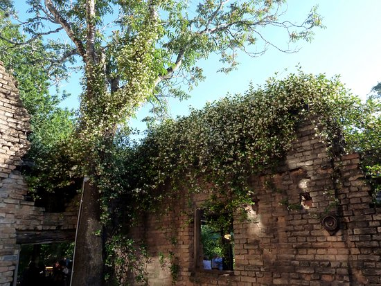 Gristmill: honeysuckle wall