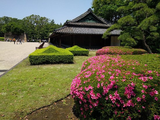 The East Gardens of the Imperial Palace (Edo Castle Ruin): IMG_20180515_122023_large.jpg