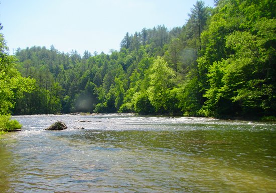 Wildwater Rafting: On the River