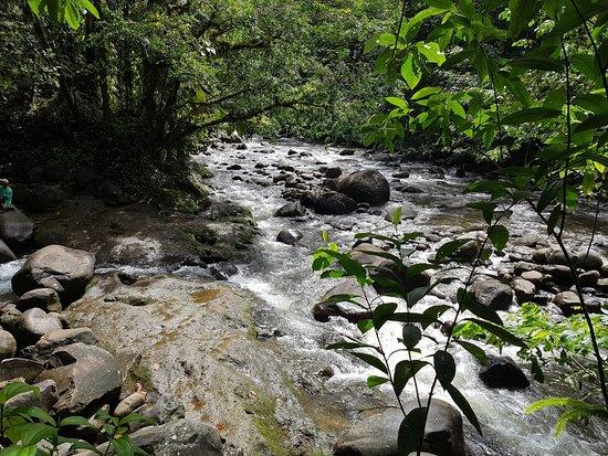 Nationalpark, Guadeloupe: IMG-20180515-WA0005_large.jpg