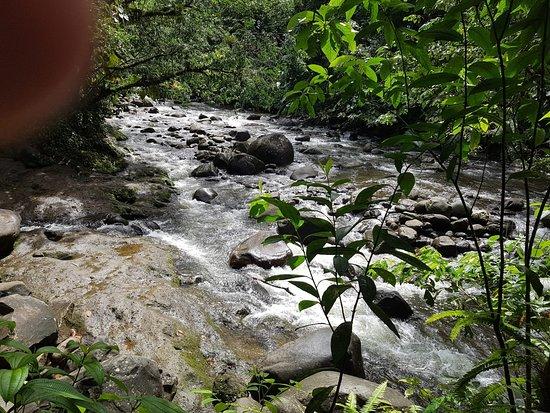 Nationalpark, Guadeloupe: IMG-20180515-WA0003_large.jpg