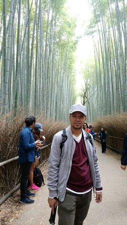 Bamboo Forest Street: IMG-20180418-WA0004_large.jpg