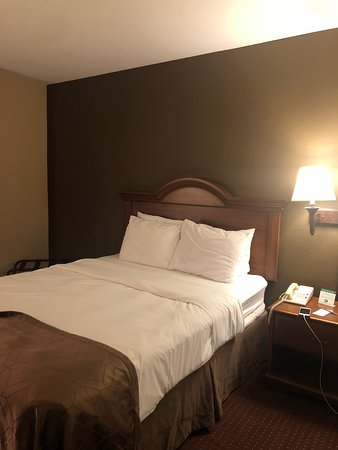 Dollinger's Inn & Suites Picture