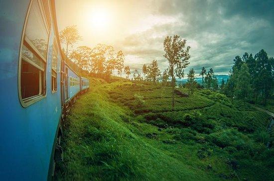 Experience real Sri Lanka