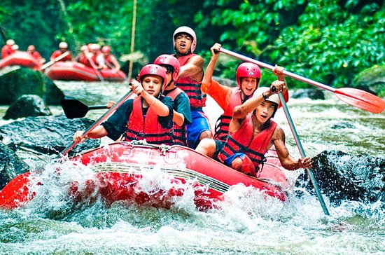 Halvdags Rafting i Ayung River...
