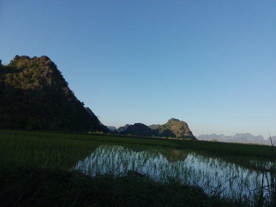 Paddy fields around Sadan Cave