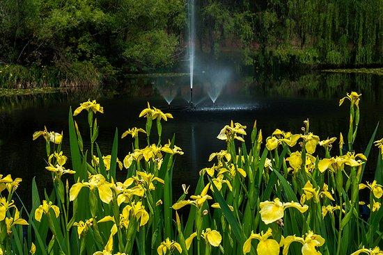 Blackheath, Australia: Parklands Lake