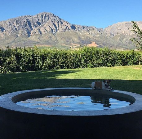 Breede River, South Africa: Trompie at the Turkish Bath at Merlot Cottage