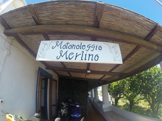 Motonoleggio Merlino
