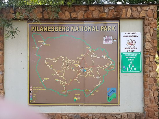 Pilanesberg National Park, South Africa: I won't recommend a visit to this park