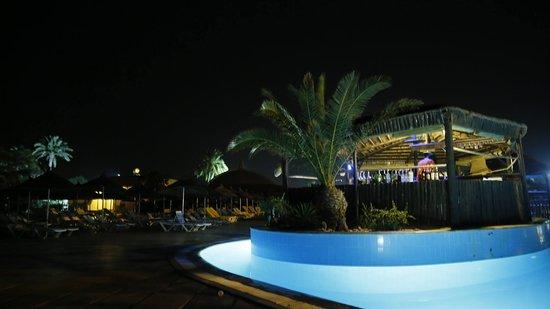 Mezraia, Tunisia: Bar nenuphar