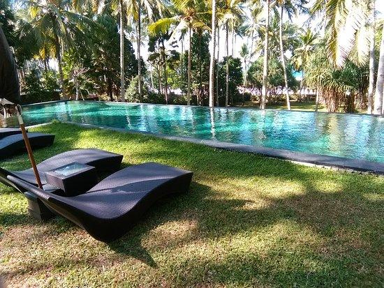 Pekutatan, Indonesien: Private pool for kelapa residence
