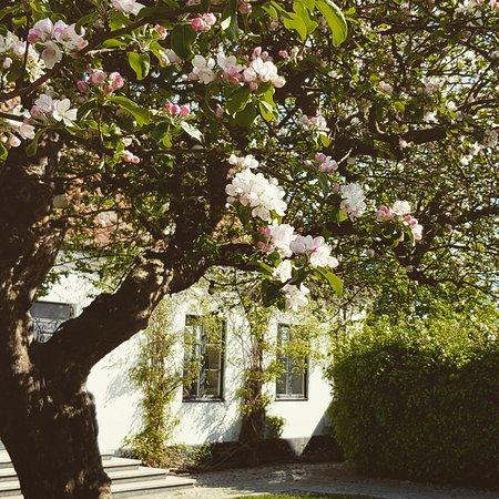 Loderup, Suécia: Trädgård med uteservering