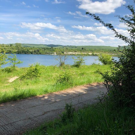 College Lake Nature Reserve