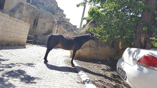 Queens Cave Cappadocia : 20180514_092507_large.jpg