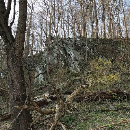 Scott's Run Nature Preserve: photo7.jpg