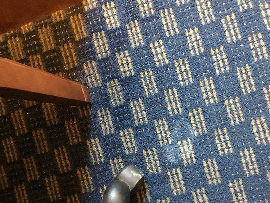 Abilene, KS: Carpet stained or not cleaned