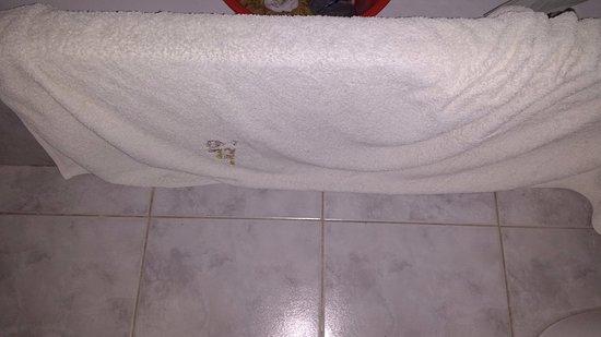 Rincon del Atuel, Argentina: suciedad del baño y toallas