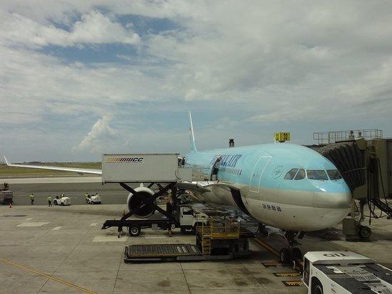 Zdjęcie Korean Air