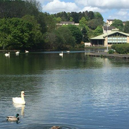 Galashiels, UK: photo2.jpg
