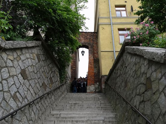 Ucho Igielne,  Sandomierz