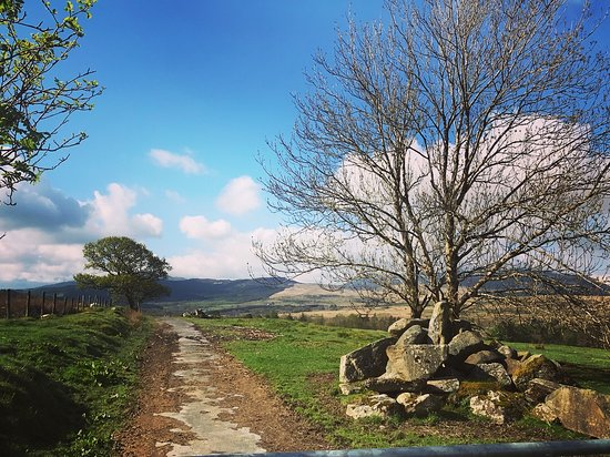Trawsfynydd Photo