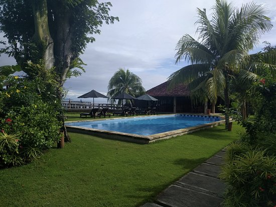 Wori, Indonesia: Pool from room 6