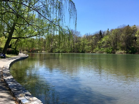 Hagerstown, MD: Willow on the Lake