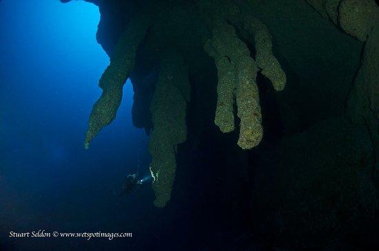 Long Caye, เบลีซ: The Great blue Hole